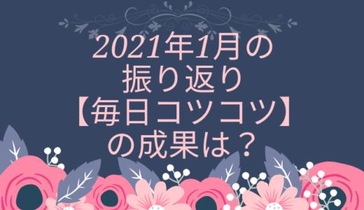 2021年1月の振り返り【毎日コツコツ】の成果は?
