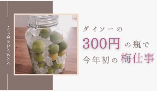 【梅シロップ】ダイソーの3L300円の瓶で今年初の『梅仕事』